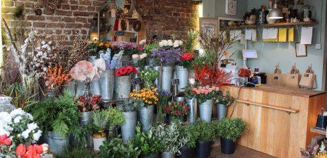 Floom Miss Moles Flower Emporium Shop 2