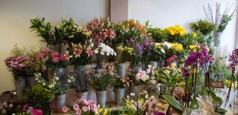 Floom Sevenoaks Florist Studio 2