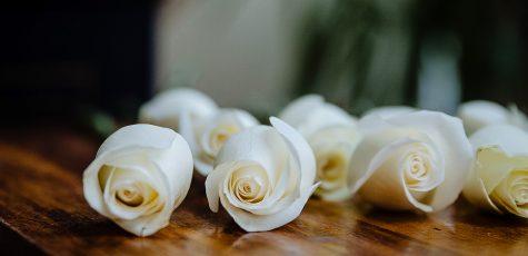 Floom Shilpa Reddy Studio 2