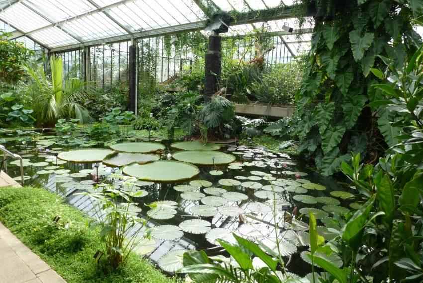 1 Floom Magazine Green Spaces Kew Gardens Flikr Paula Funnell