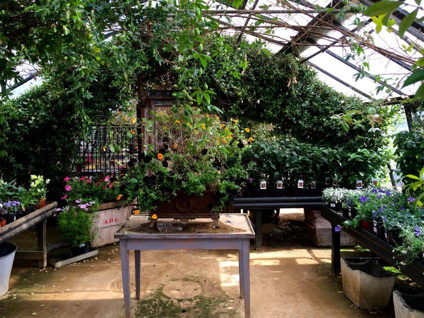 1 Floom Magazine Green Spaces Petersham Nurseries 1