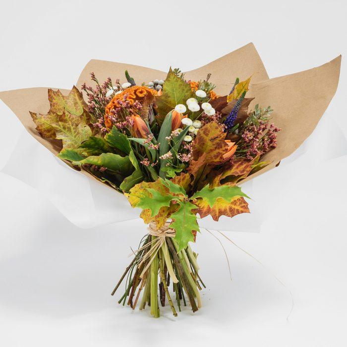 Floom Elizabeth Gordon Celeosa Orange 1