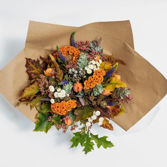Floom Elizabeth Gordon Celeosa Orange 2