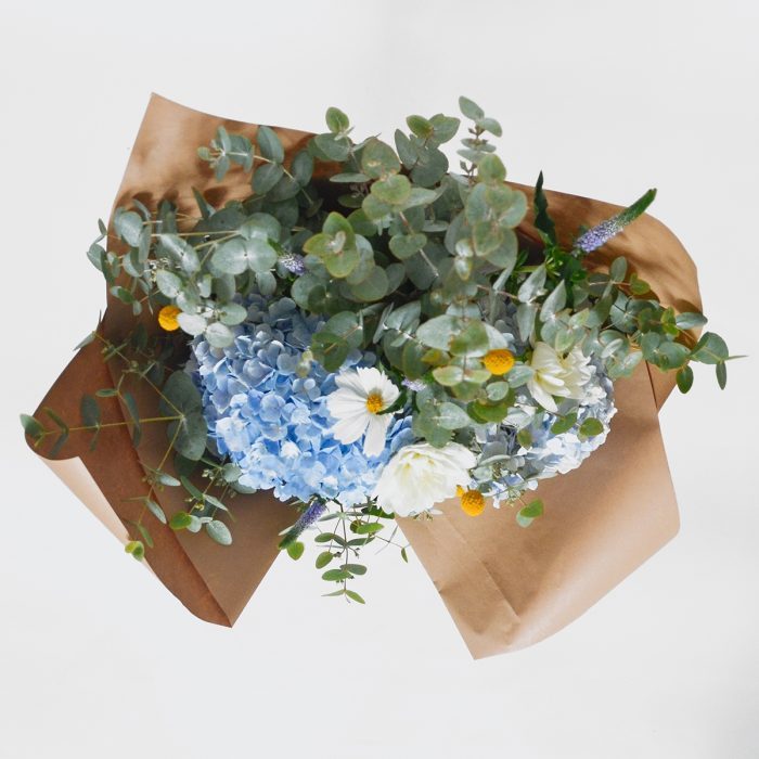 Floom Philipa Day Hydrangea 2