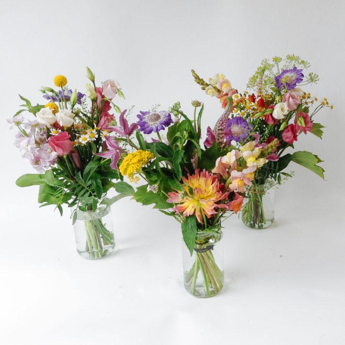 Floom Larkspur Lavendar Bright Posy Trio 1