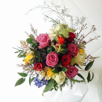 Floom Serendipity Botanist Coco 3