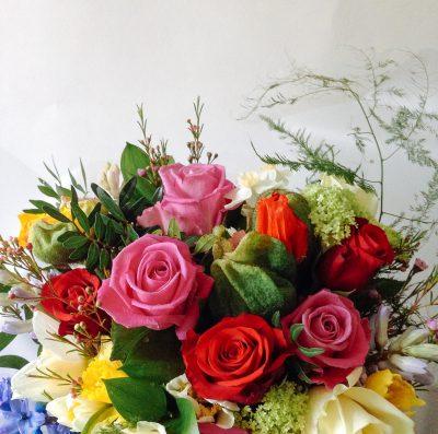 Floom Serendipity Botanist Coco 4