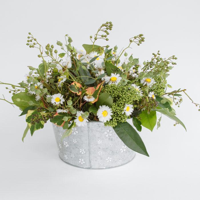 Floom Zita Elze Daisy Garden 1