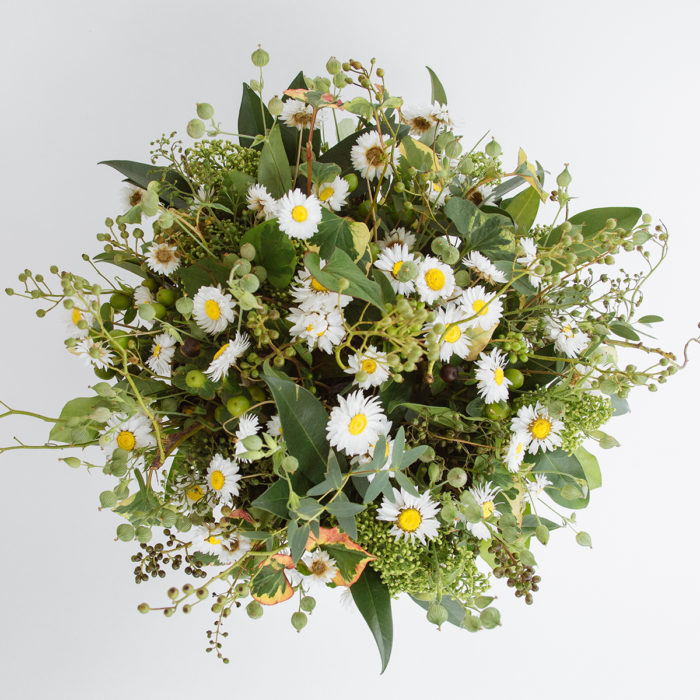 Floom Zita Elze Daisy Garden 2