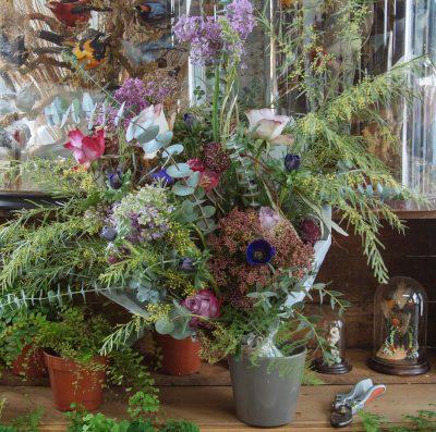 Floom The English Flowerhouse Fawkes 2