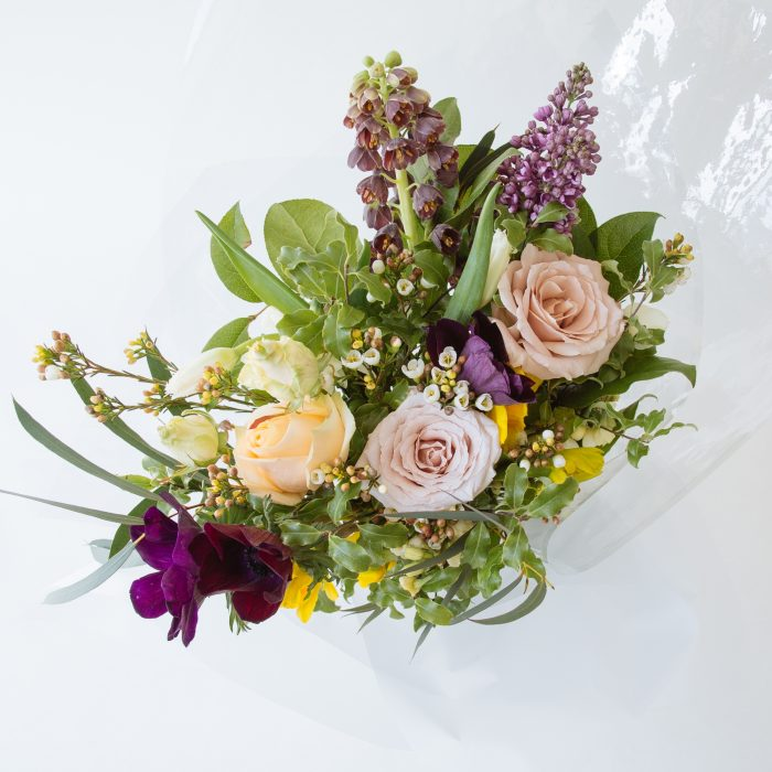 Floom Serendipity Botanist Grayle 3