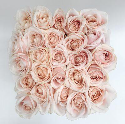 Floom Shilpa Reddy Hyde Park Rose Box 3