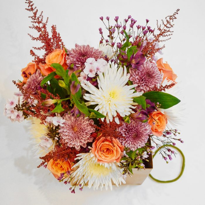 Floom The Flower Girl Chrysanthemum 2