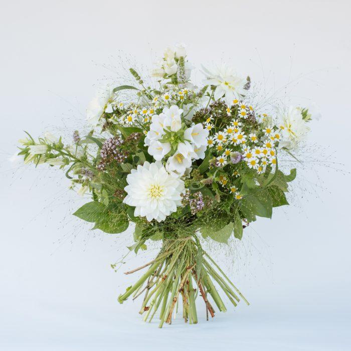 Floom The Fresh Flower Company Flowers Bouquet Late Summer White Posy Dahlia 1
