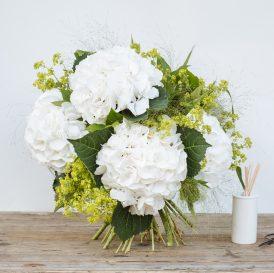 Floom The Fresh Flower Company Flowers Bouquet Massed White Hydrangea 1