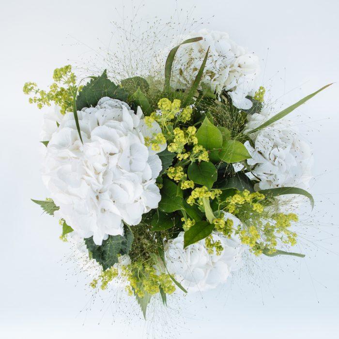 Floom The Fresh Flower Company Flowers Bouquet Massed White Hydrangea 2