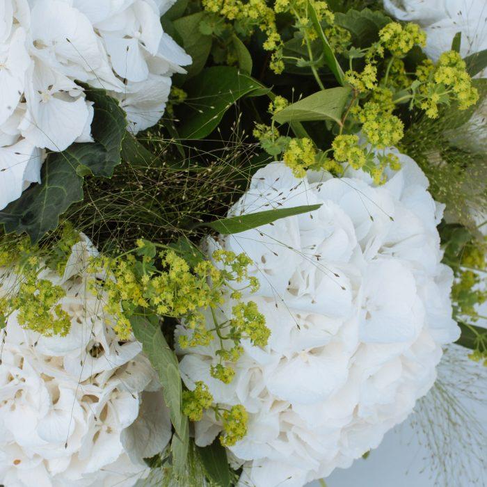 Floom The Fresh Flower Company Flowers Bouquet Massed White Hydrangea 3