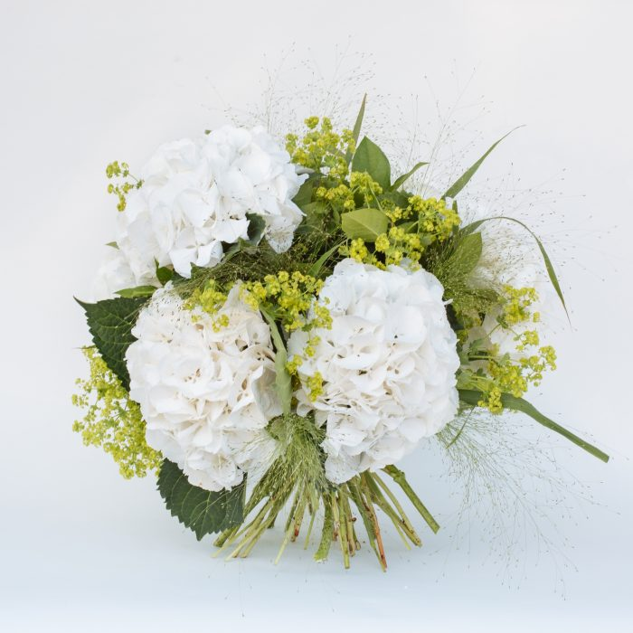 Floom The Fresh Flower Company Flowers Bouquet Massed White Hydrangea 4