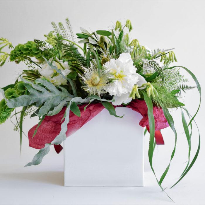 Floom Mad Lillies Niamph 1