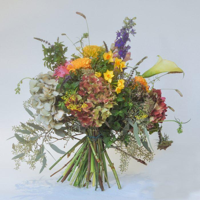 Floom Serendipity Botanist Nottinghill Larkspur Dahlia1