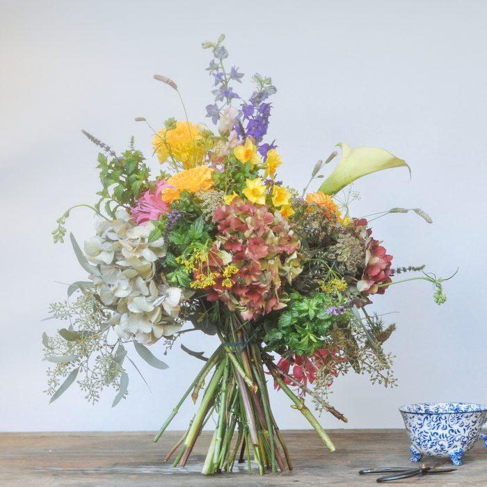 Floom Serendipity Botanist Nottinghill Larkspur Dahlia2