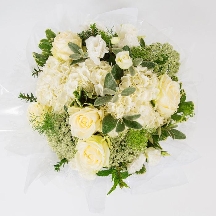 Floom Paul Thomas Flowers White Rose 2