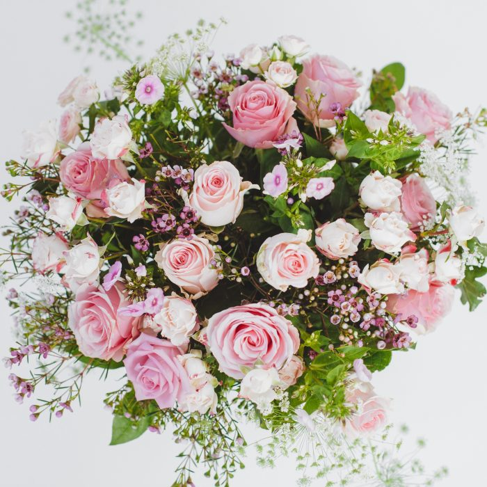 Floom The White Orchid Pink Roses 2