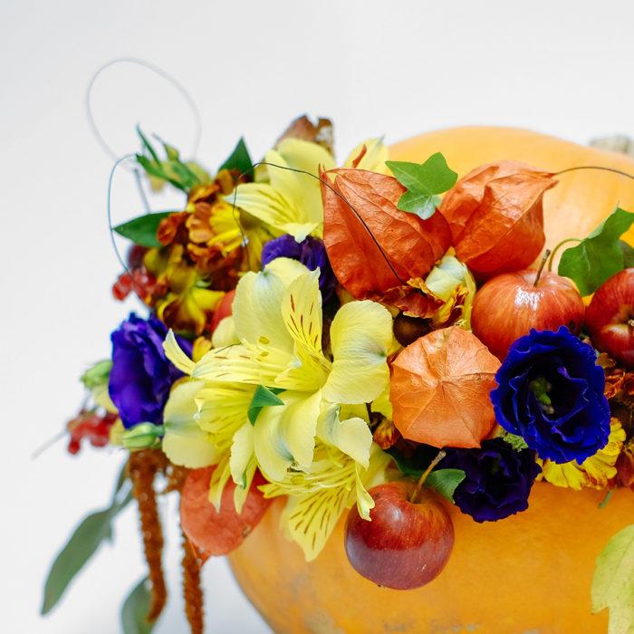 Floom Orchidya Pumpkin Prosperity 2