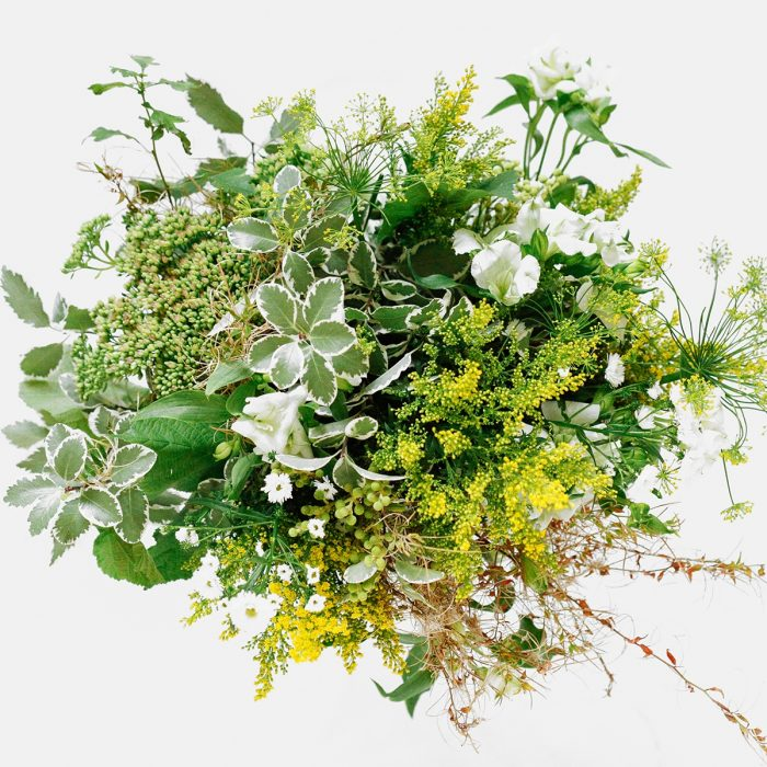 Floom Zeze Flowers Dill Green 2