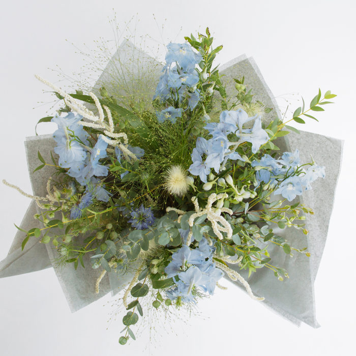 Floom Zita Elze Delphinium Sky Blue 2