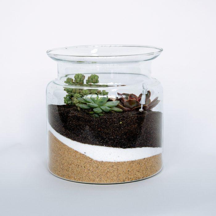 Floom Little Botanica Succulent Jar 1