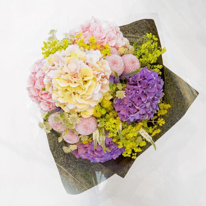 Floom Formosa Hydrangeas Veronica 2