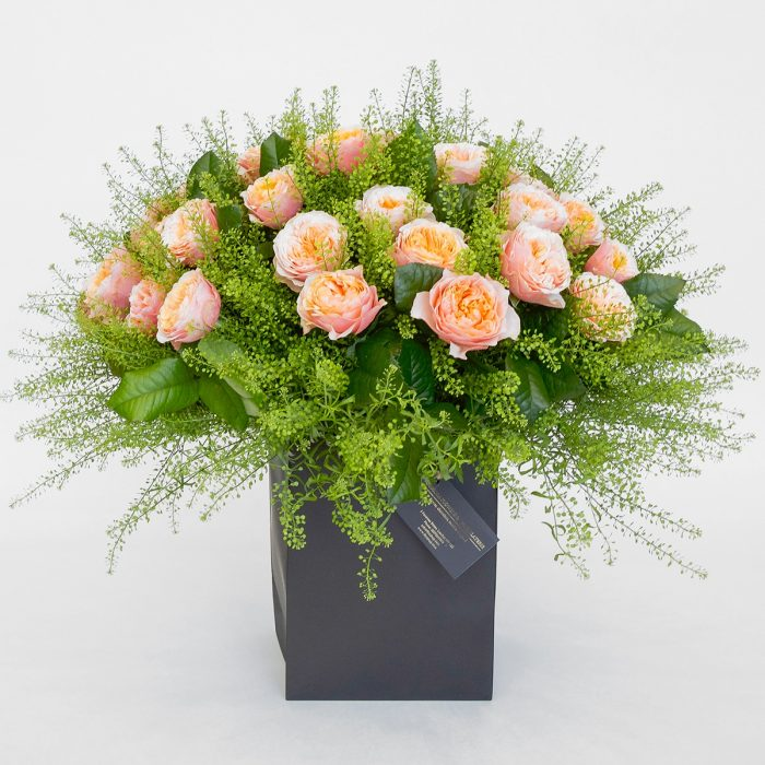 Floom Formosa Peach Rose 1