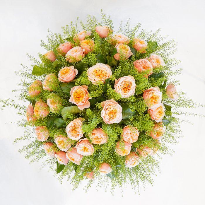 Floom Formosa Peach Rose 2