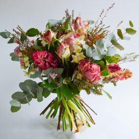 Floom Flora Nora The Richard Gere 1