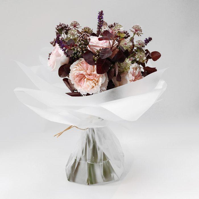 Floom Belle De Jour Rose Astrantia 1