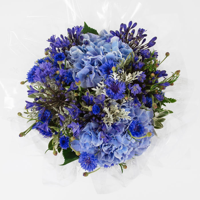 Floom Paul Thomas Flowers Blue Hydrangea 2