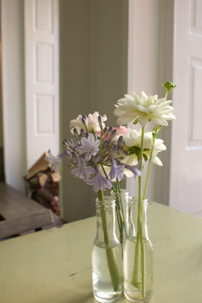 Unser Kopenhagen Reisebericht, Foodblog flowers on my plate