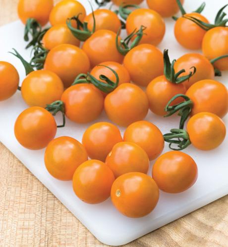Cherry Orange