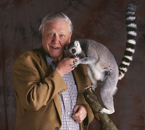 Stuart Wood / Sir David Attenborough / BBC