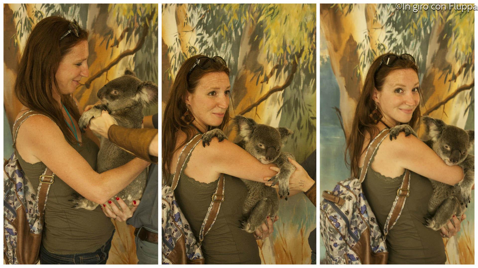 Australia: dove abbracciare un Koala