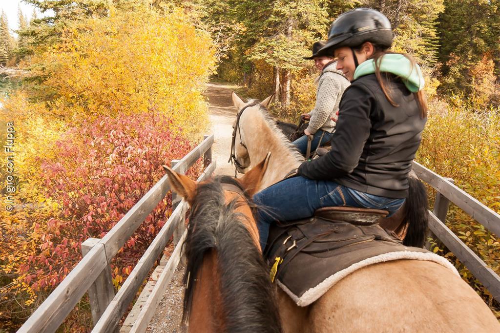 Banff National park - passeggiata a cavallo