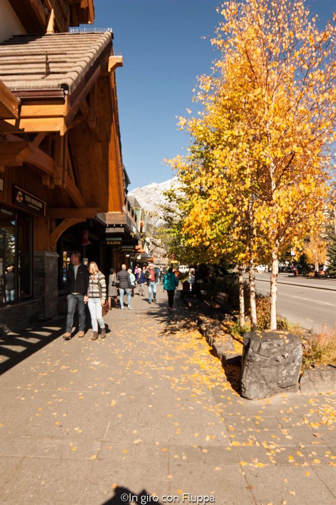 Banff National park - Banff town