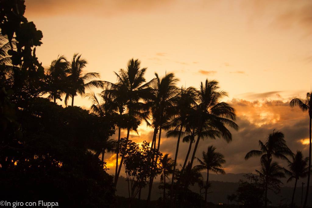 Cairns & Port Douglas