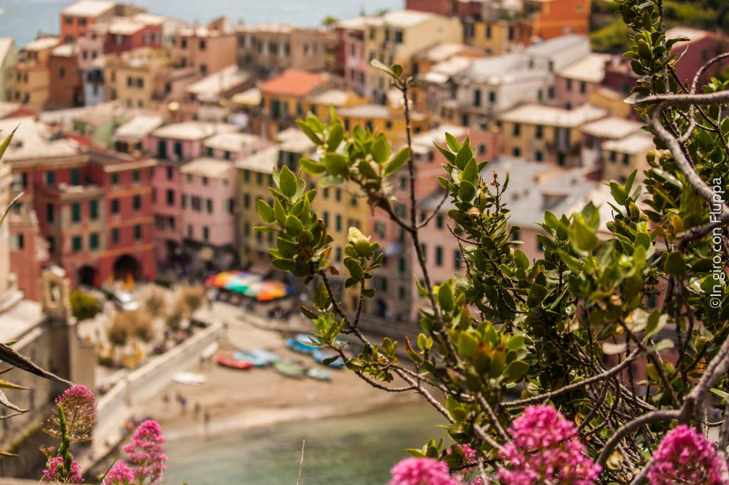 Cinque Terre, a colorful palette by the sea