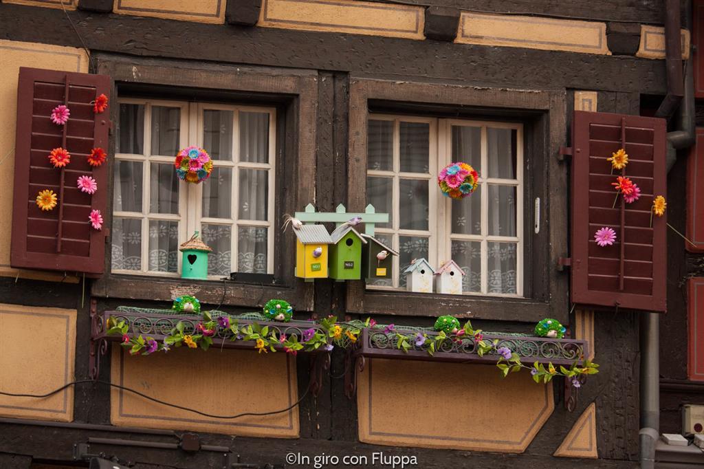 Cosa vedere a Colmar in un giorno