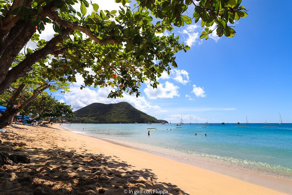 Cosa fare a Santa Lucia, Caraibi: Reduit Beach