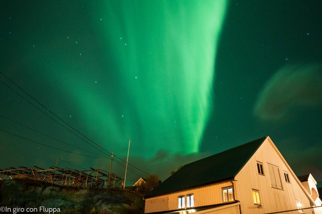 Isole Lofoten -Hamnøy, Aurora Boreale