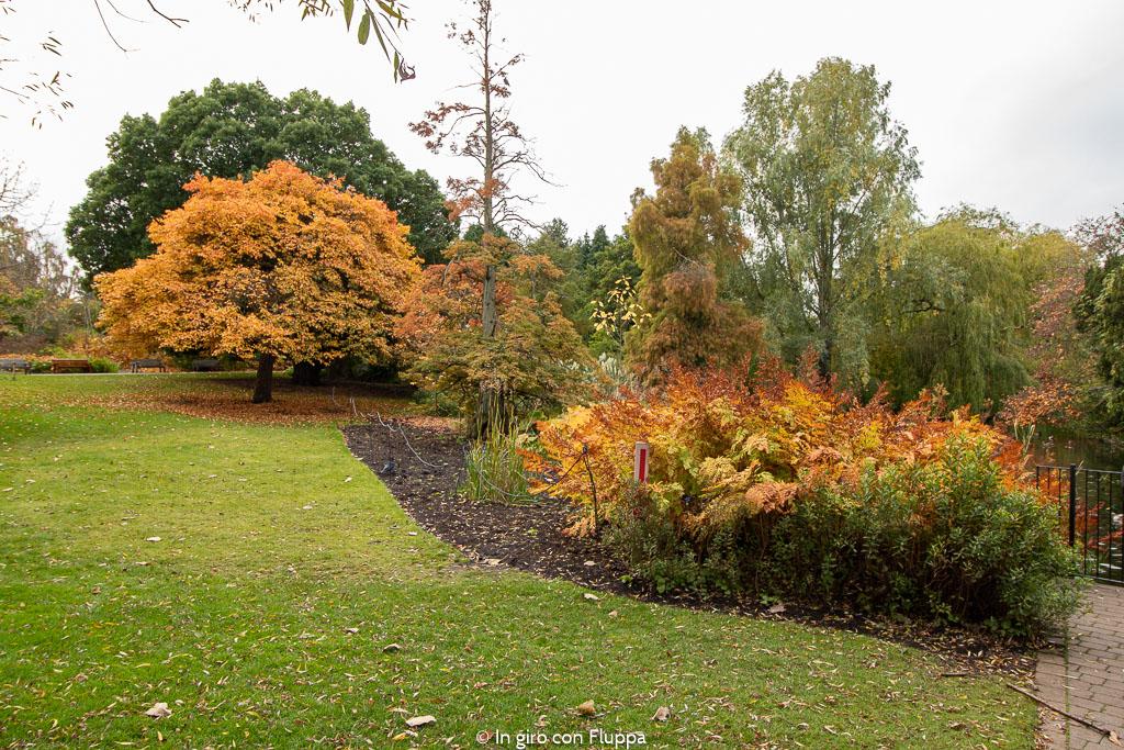 Dove vedere il fogliage a Edimburgo: Royal Botanic Gardens