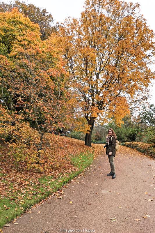 Dove vedere il foliage a Edimburgo